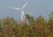 Zielona energia dostała zadyszki