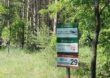 Turystyka i edukacja leśna na terenach niezurbanizowanych