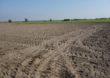 Rozbieżności w powierzchni PEG kłopotliwe dla rolników