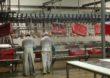 UE zwiększy kontyngenty na mięso drobiowe z Ukrainy?