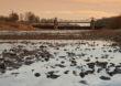 Powstaje pierwszy w Polsce Plan przeciwdziałania skutkom suszy