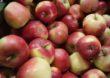 Należności wobec przetwórców jabłek zostaną uregulowane…