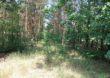 Wsparcie na inwestycje zwiększające odporność ekosystemów leśnych i ich wartość dla środowiska