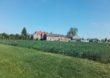 Sztuczne mokradła – nowatorski projekt oczyszczalni roślinnej