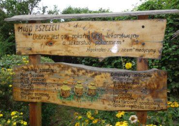 Więcej pieniędzy na wspieranie pszczelarstwa