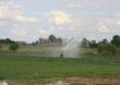 Rolnicy zwolnieni z opłat za wodę do 5 m3 dziennego poboru