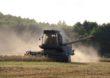 Żniwa w pełni – uwaga na pył rolniczy!