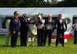 50. aukcja koni arabskich Pride of Poland w Janowie Podlaskim