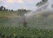 Złóż wniosek o dotację na inwestycje w nawadnianie gospodarstw