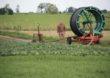 Wspierają inwestycje w nawadnianie gospodarstw rolnych
