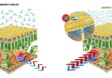 Rewolucja na rynku nawozów mikroelementowych
