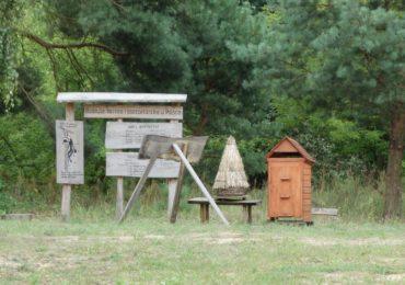 Pierwszy krok do ochrony pszczół przed pestycydami
