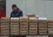 Azja uznana za światowe centrum produkcji jaj
