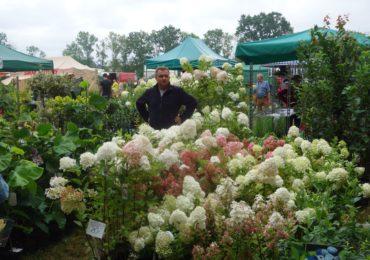 Informacja dla amatorów ogrodników/hobbystów – nowe prawo zdrowia roślin