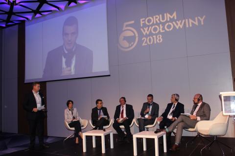 Forum Sektora Wołowiny