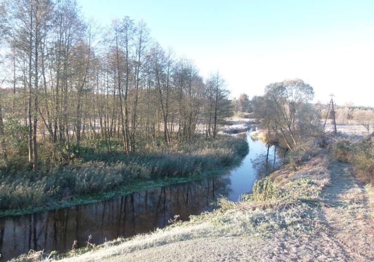 Ochrona wód przed zanieczyszczeniem azotanami pochodzącymi ze źródeł rolniczych