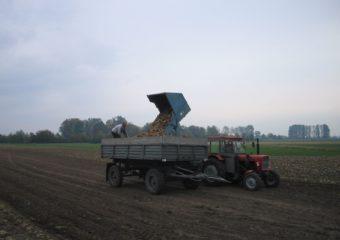 Zaliczki na poczet dopłat na kontach rolników