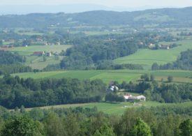 Ministrowie rolnictwa UE o działaniach niezbędnych wobec trudnej sytuacji sektora żywnościowego z powodu COVID-19