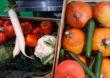 GIW – Zalecenia dla producentów żywności w związku z koronawirusem