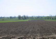 Pola po dwóch stronach granicy – ułatwienia dla rolników