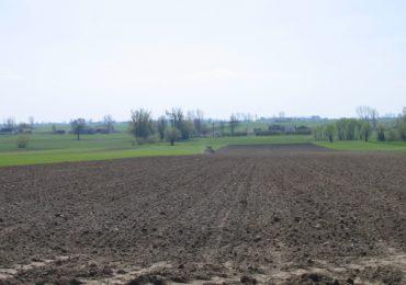 Pola po dwóch stronach granicy - ułatwienia dla rolników