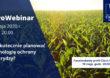Jak skutecznie planować technologię ochrony kukurydzy? CIECH Sarzyna zaprasza na AgroWebinar