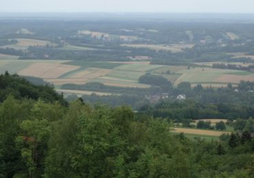 Europa po pandemii potrzebuje zmian zasad wsparcia rolnictwa