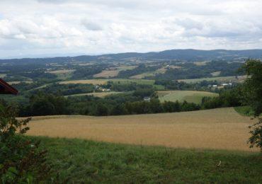 Różnorodność biologiczna na użytkach rolnych – wspólna polityka rolna nie zapobiegła pogorszeniu sytuacji. Raport Europejskiego Trybunału Obrachunkowego