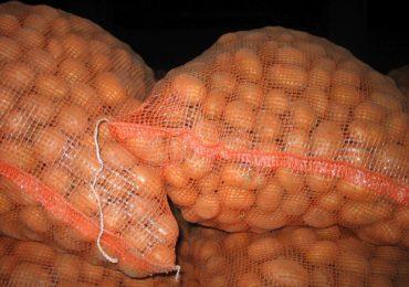 Przemieszczanie ziemniaków z Polski do innych państw członkowskich Unii Europejskiej